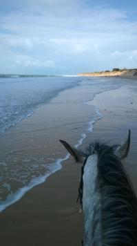 Quiera plage